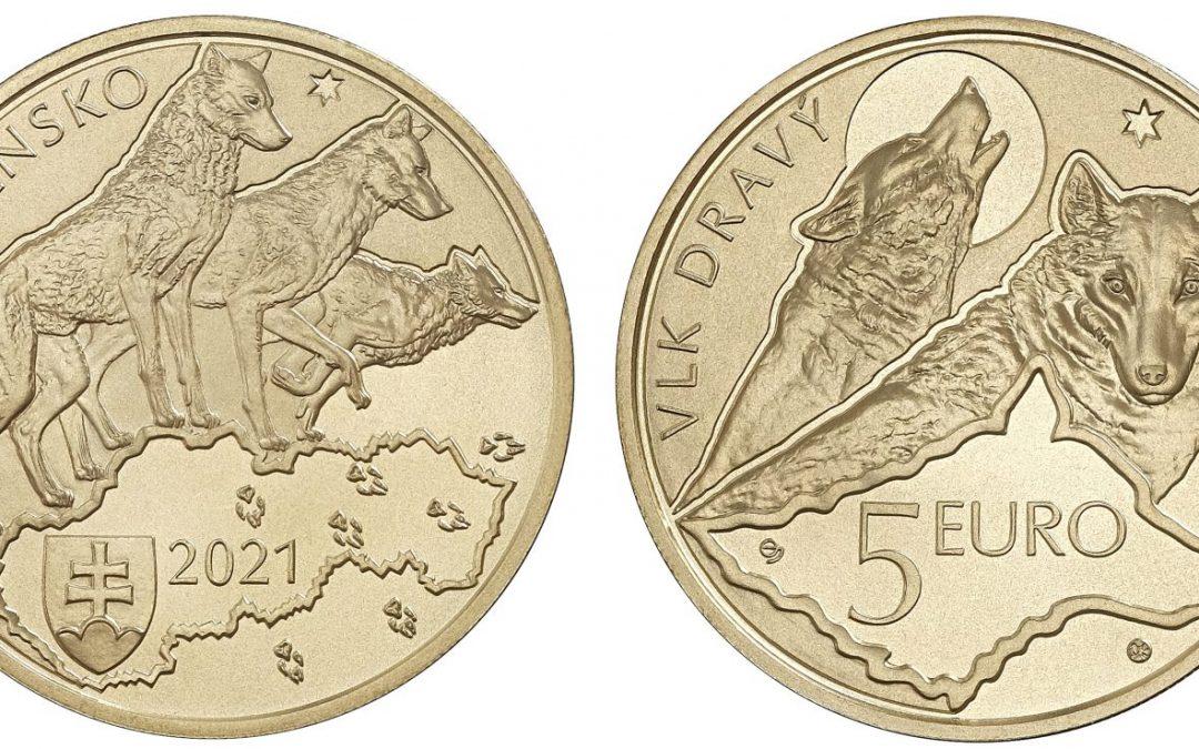 minca vlk dravý